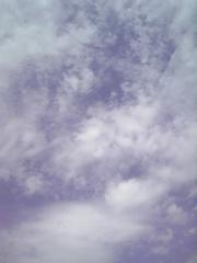090915_124145.jpgのサムネール画像